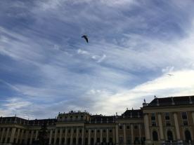 Vienna5