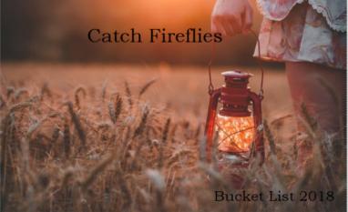Bucket List Fireflies