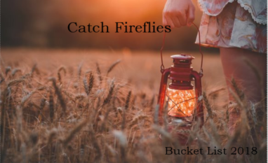 Bucket List Fireflies